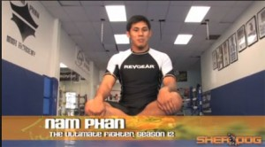 nam phan ultimate fighter